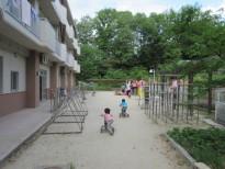 幼児園庭三輪車IMG_1174